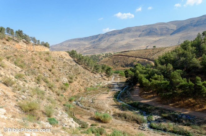 wadi farah from the northwest (the way abraham would have come into the land towards shechem)